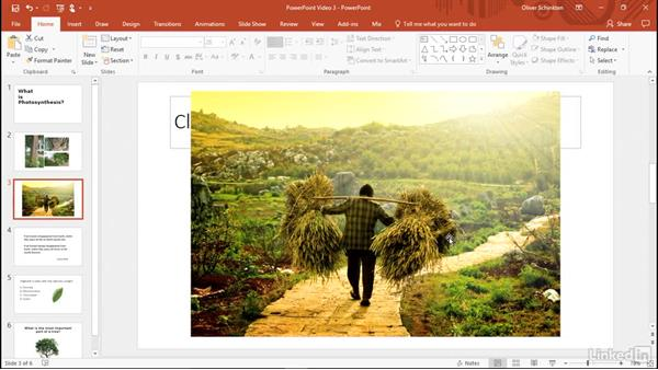Create engaging presentations: Office 2016 for Educators