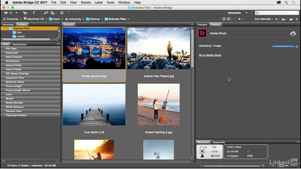 Publish directly to Adobe Stock: Photoshop CC 2017 for Photographers: New Features