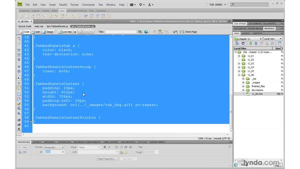 Organizing Spry style sheets: Dreamweaver CS4 with CSS Essential Training