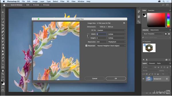 Changing document size: Photoshop CC 2017 Essential Training: The Basics