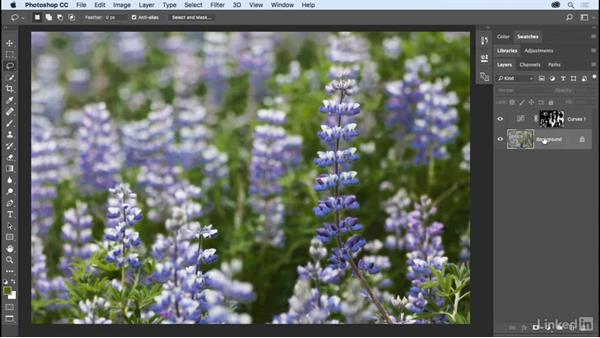 Making selections based on color and focus: Photoshop CC 2017 Essential Training: The Basics