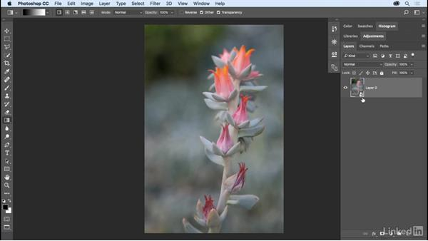 Applying filters nondestructively with Smart Filters: Photoshop CC 2017 Essential Training: The Basics