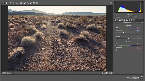 Applying Camera Raw as a filter: Photoshop CC 2017 Essential Training: The Basics