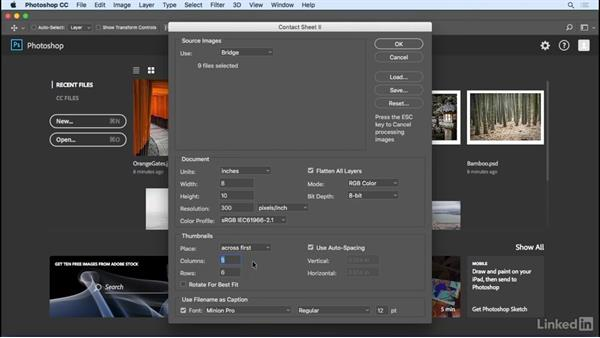 Creating basic contact sheets: Photoshop CC 2017 Essential Training: Photography