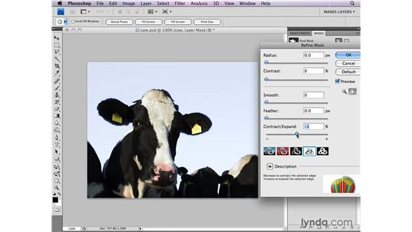 Fine-tuning mask edges: Photoshop CS4: Layer Masks in Depth