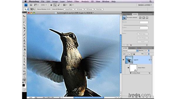 Targeting image sharpening: Photoshop CS4: Layer Masks in Depth