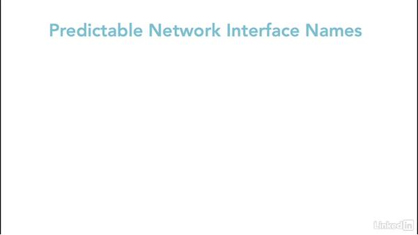Predictable network interface names: Linux: Network Configuration