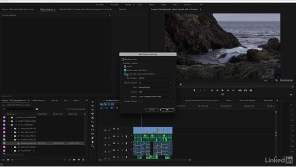 Sending audio effects through AAF to protocols: Premiere Pro CC 2017: New Features
