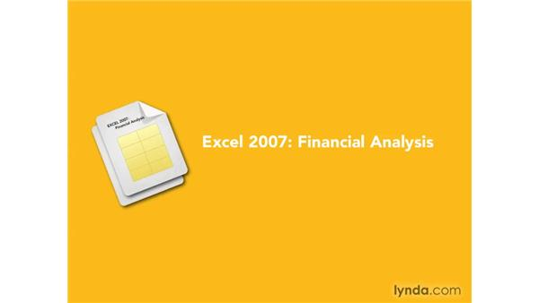 Disclaimer: Excel 2007: Financial Analysis