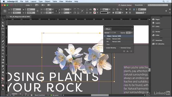 Adjusting transparency, drop shadows, and effects: InDesign CC 2017 Essential Training