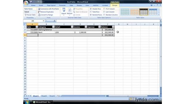Tracking income and expenses using an Excel table: Excel 2007: Financial Analysis
