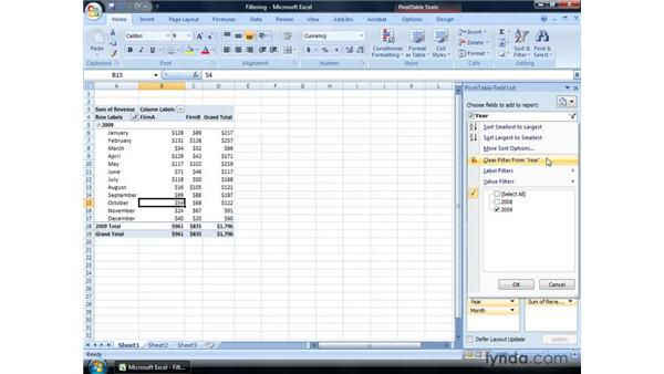 Filtering a Pivot Table: Excel 2007: Financial Analysis