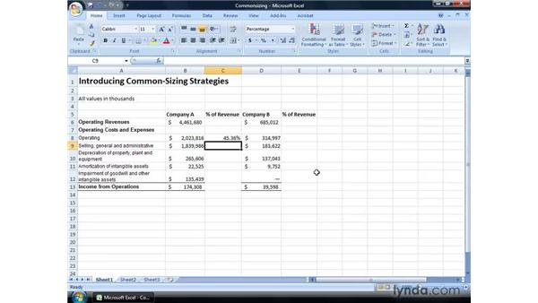 Introducing common-sizing strategies for analyzing financial statements: Excel 2007: Financial Analysis