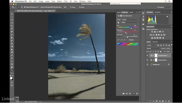 Editing an infrared image: Infrared Photography: Nature and Landscapes