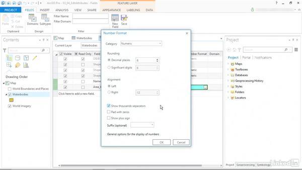 Edit feature attributes: ArcGIS Pro Essential Training