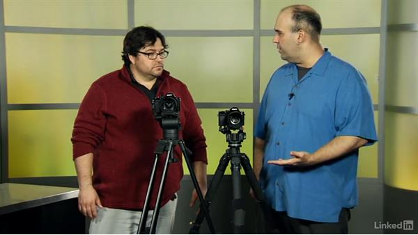 Introduction to the Sony Alpha a7: Video Gear: Cameras & Lenses