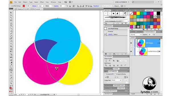Welcome: Illustrator CS4 One-on-One: Mastery