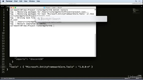 PostgreSQL: Accessing Existing Databases with Entity Framework Core