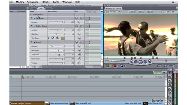 Filterpacs: Final Cut Pro 7 Essential Training