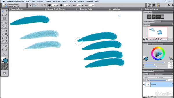 Installing custom content: Painter 2017 Essential Training