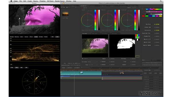 Viewing Matte and Vignette previews on a video monitor: Color 1.5 New Features