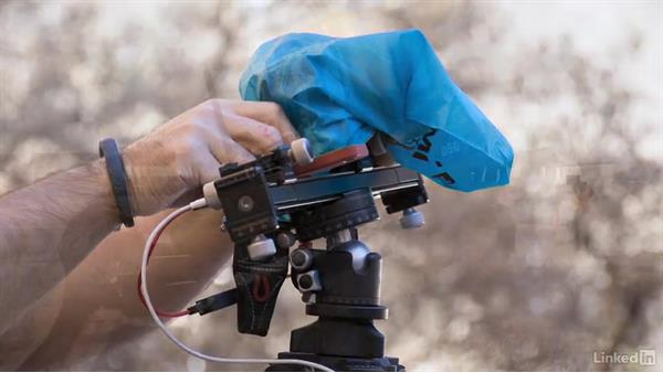 Keeping your Gear Safe: Video Gear: Support & Grip