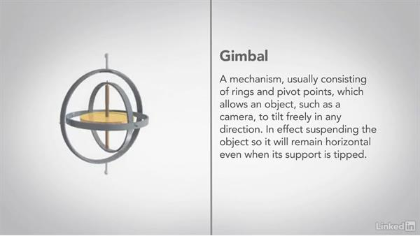 Using a gimbal: Video Gear: Support & Grip