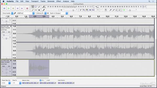 Cut, copy, and paste: Learning Audacity