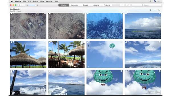 Add and work with keywords: Photos for macOS Essential Training