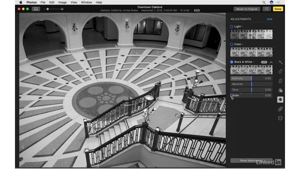 Work with B&W adjustments: Photos for macOS Essential Training