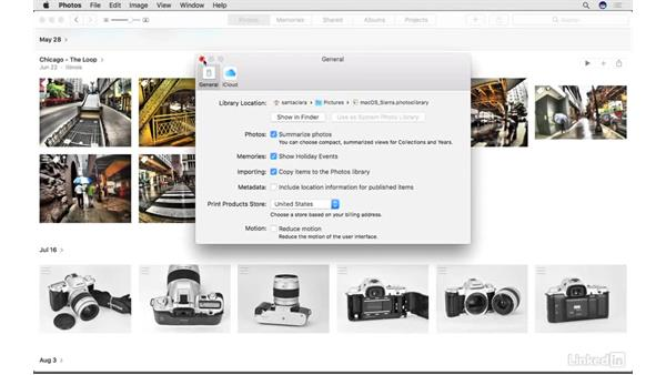 The system library: Photos for macOS Essential Training