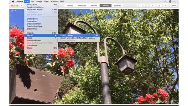 Export an edited movie: Photos for macOS Essential Training