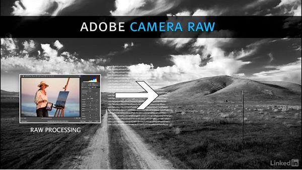 What is Camera Raw?: Photoshop CC 2017 for Photographers