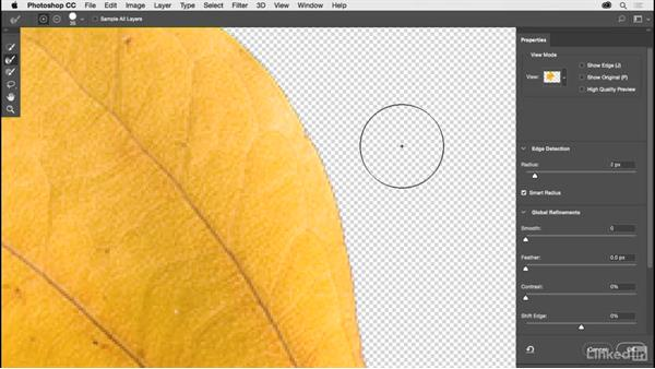 Working with the Quick Select tool: Photoshop CC 2017 for Photographers