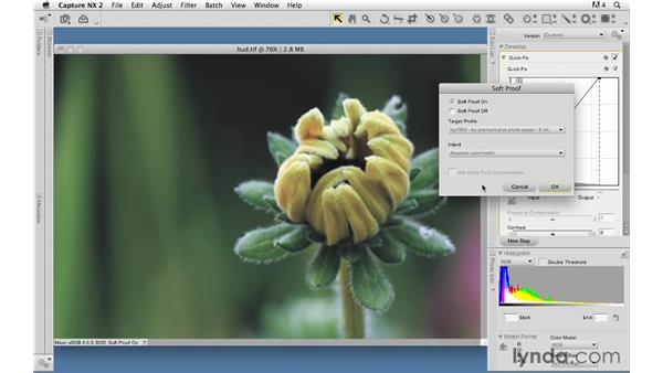 Managing and uploading your site: Creating a First Web Site with Dreamweaver CS4