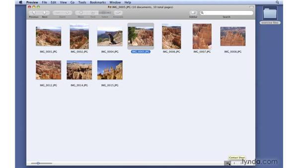 Viewing contact sheets: Mac OS X 10.6 Snow Leopard New Features