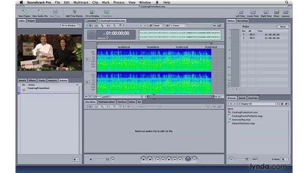 Editing the frequency spectrum: Soundtrack Pro 3 Essential Training