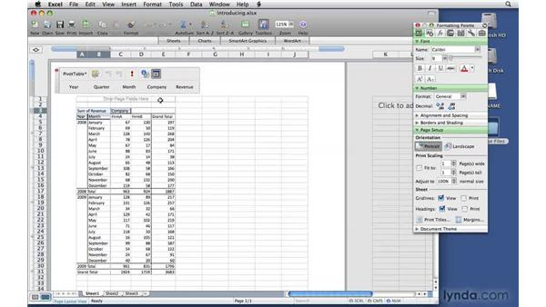 Introducing PivotTable reports: Excel 2008 for Mac: Pivot Tables for Data Analysis