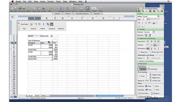 Pivoting a PivotTable report: Excel 2008 for Mac: Pivot Tables for Data Analysis
