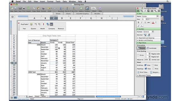 Sorting data: Excel 2008 for Mac: Pivot Tables for Data Analysis