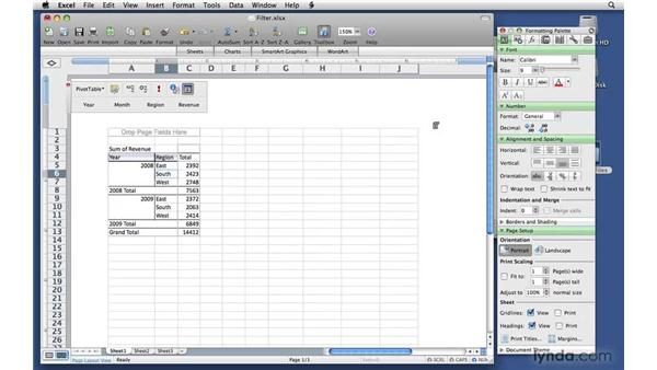 Filtering a field by selection or by rule: Excel 2008 for Mac: Pivot Tables for Data Analysis