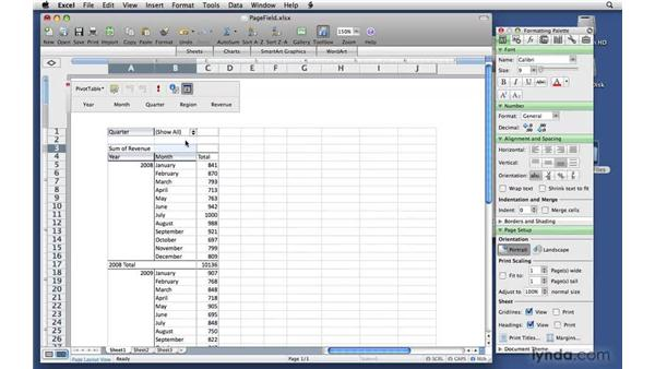 Filtering using report filter fields: Excel 2008 for Mac: Pivot Tables for Data Analysis