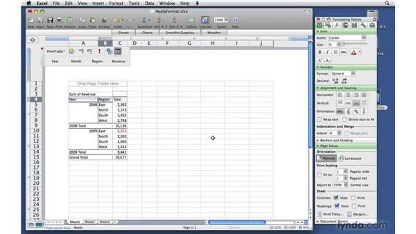 Applying formats: Excel 2008 for Mac: Pivot Tables for Data Analysis