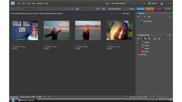 Working with catalogs: Photoshop Elements 8 for Windows Essential Training