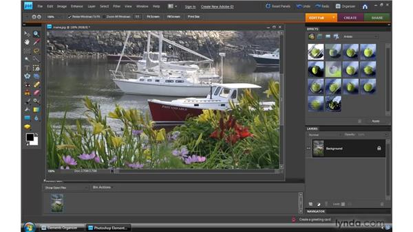 Zooming and navigating: Photoshop Elements 8 for Windows Essential Training
