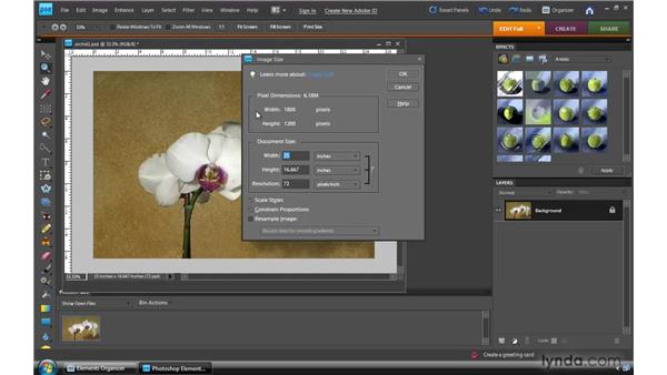 Photo resizing and resolution: Photoshop Elements 8 for Windows Essential Training