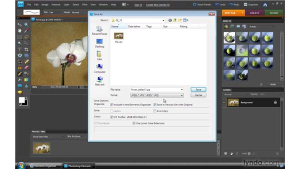 Saving files: Photoshop Elements 8 for Windows Essential Training