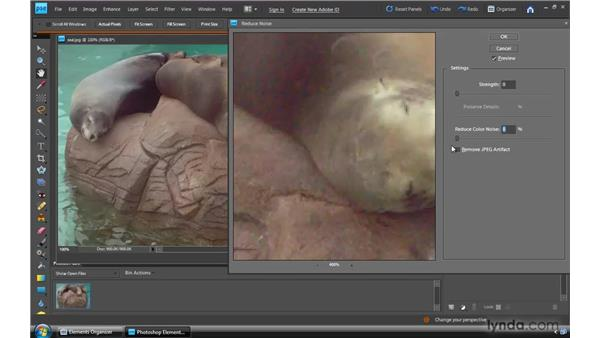 Reducing digital noise: Photoshop Elements 8 for Windows Essential Training