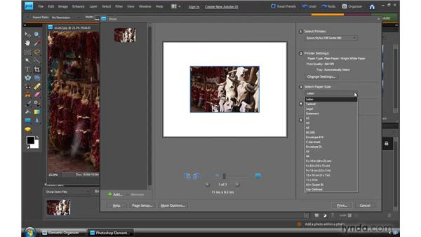 Printing photos: Photoshop Elements 8 for Windows Essential Training
