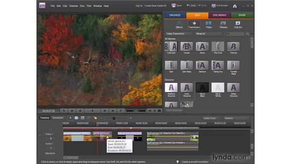 Animating video effects: Premiere Elements 8 for Windows Essential Training